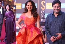 Siima-Awards-2018-Celebs-at-Red-Carpet-Day-01-Pics