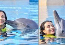 Trisha Trolled for photos with Dolphins!