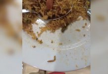 ikea hyderabad caterpillar in biryani