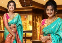 Anupama Parameswaran Stealing Hearts in Silk saree