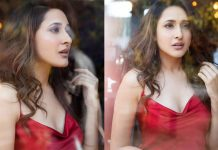 Pragya Jaiswal Cool Morning Stills